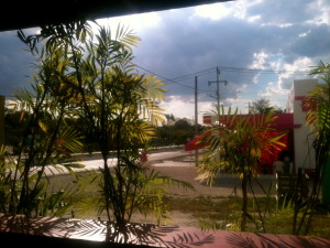 Beauty in random moments. (View from local bar in Xpujil)